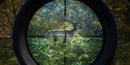 Call of the Wild | Охотник: Зов природы